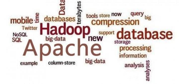 Apache Hadoop 技术